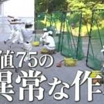 弱くても勝てます、九話視聴率速報と動画、十話あらすじに後ドラマ金田一のキャスト!